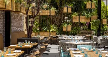 Herringbone_Waikiki_Patio_Lanai_Overhead_Planter_Boxes