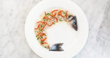 Whole_Fish_Ceviche_Herringbone_Los_Cabos_Menu