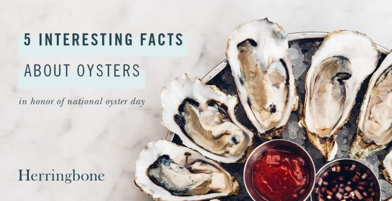 Herringbone 5 Facts for National Oyster Day